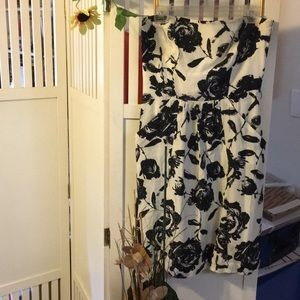 Ann Taylor Loft Black and White Floral Sundress